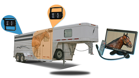 Horse Trailer 7 inch Monitor and two RV Backup Cameras   SKU25564