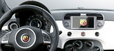 Fiat Backup Camera System